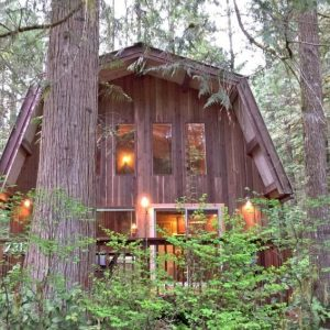 08gs Cabin With A Private Sauna!