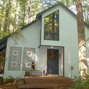 48sl Pet Friendly Cabin W/ Wifi