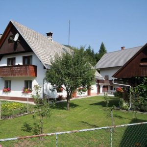 Apartment Ribnica