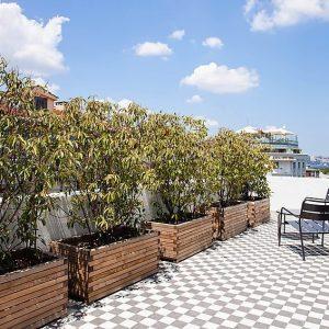 Sultanahmet Apartment